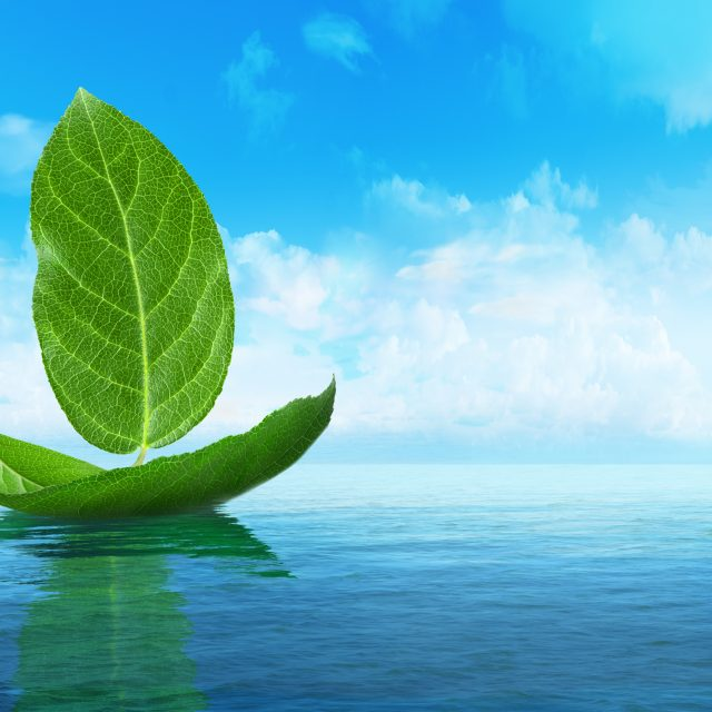 IMO 2020 – HOW WILL THE NEW ENVIRONMENTAL LEGISLATION AFFECT MY BUSINESS?